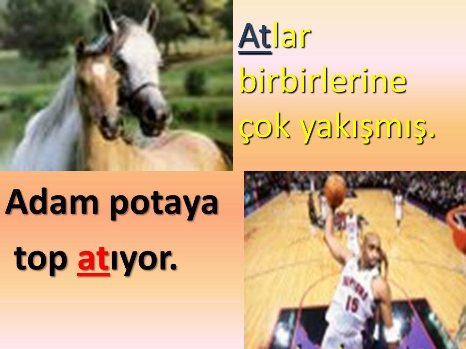 Atlar birbirlerine çok yakışmış.