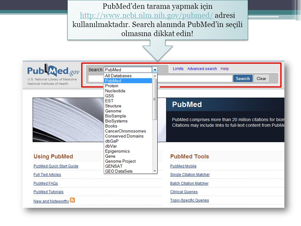 PubMed'den tarama yapmak için http://www. ncbi. nlm. nih