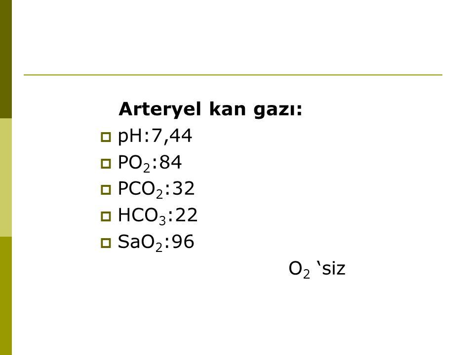 Arteryel kan gazı: pH:7,44 PO2:84 PCO2:32 HCO3:22 SaO2:96 O2 'siz