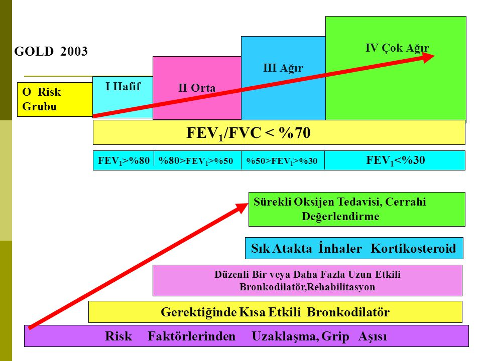 FEV1/FVC < %70 GOLD 2003 Sık Atakta İnhaler Kortikosteroid