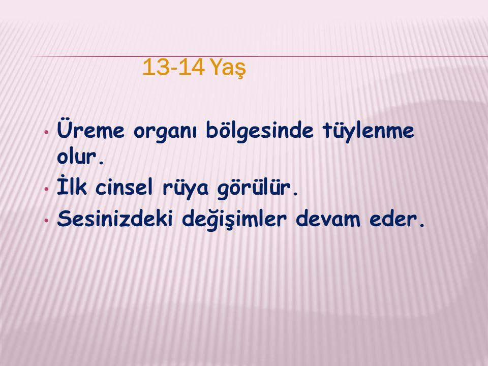 13-14 Yaş Üreme organı bölgesinde tüylenme olur. İlk cinsel rüya görülür.