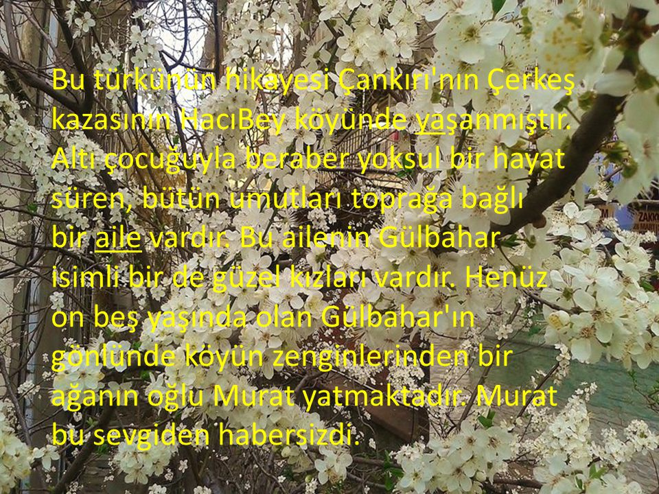 Bu türkünün hikayesi Çankırı nın Çerkeş kazasının HacıBey köyünde yaşanmıştır.