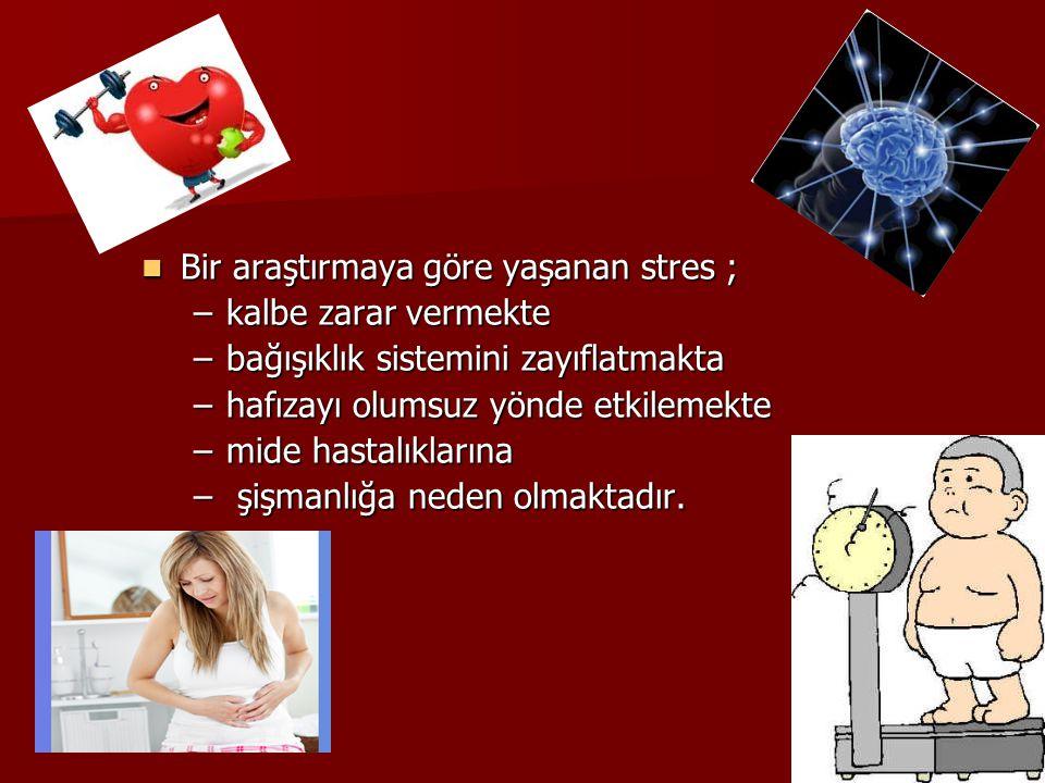 Bir araştırmaya göre yaşanan stres ;