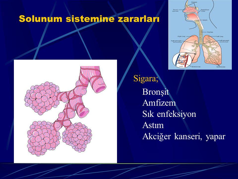 Solunum sistemine zararları