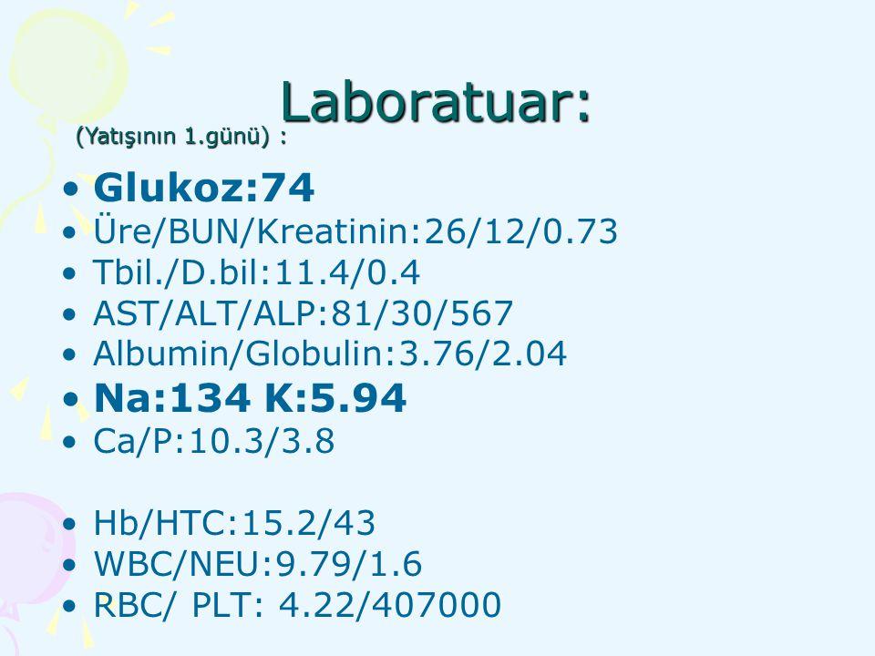 Laboratuar: Glukoz:74 Na:134 K:5.94 Üre/BUN/Kreatinin:26/12/0.73