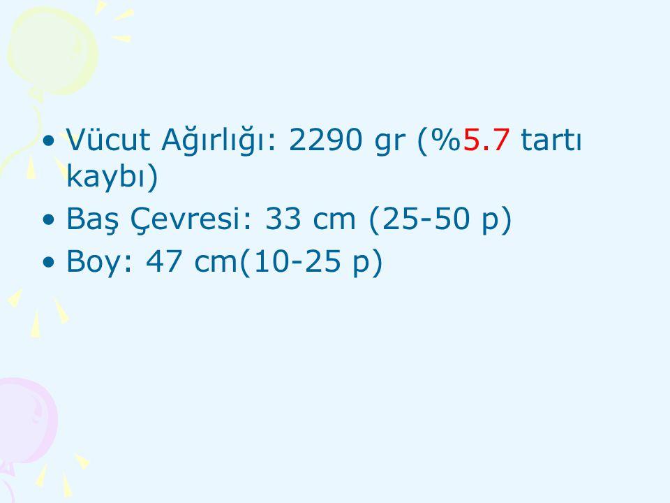 Vücut Ağırlığı: 2290 gr (%5.7 tartı kaybı)