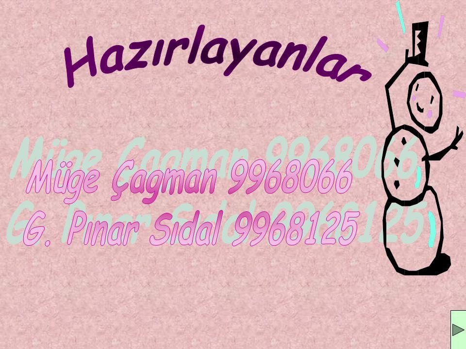 Hazırlayanlar Müge Çagman 9968066 G. Pınar Sıdal 9968125