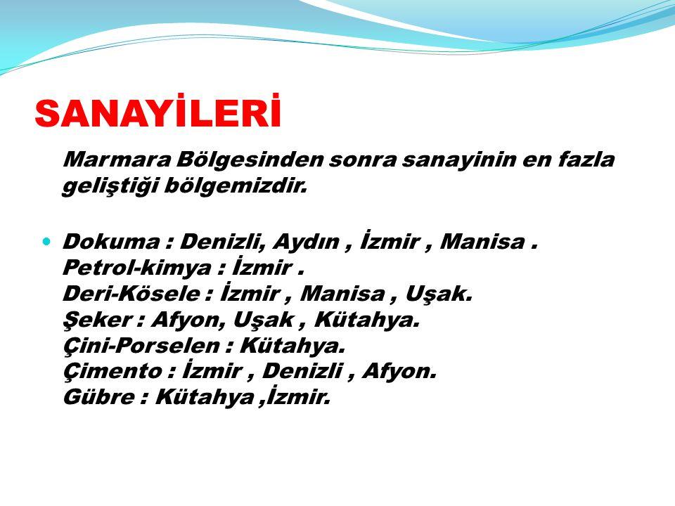 SANAYİLERİ Marmara Bölgesinden sonra sanayinin en fazla geliştiği bölgemizdir.