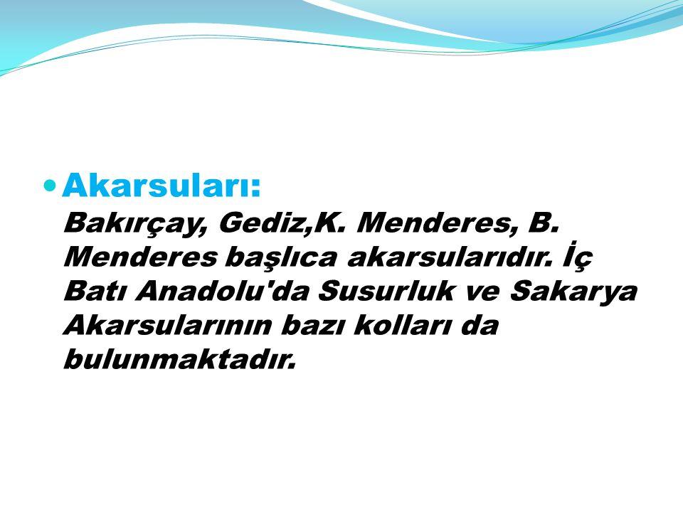 Akarsuları: Bakırçay, Gediz,K. Menderes, B