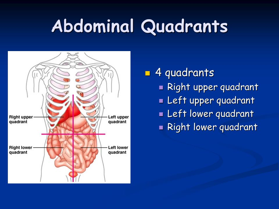 Abdominal Quadrants 4 quadrants Right upper quadrant