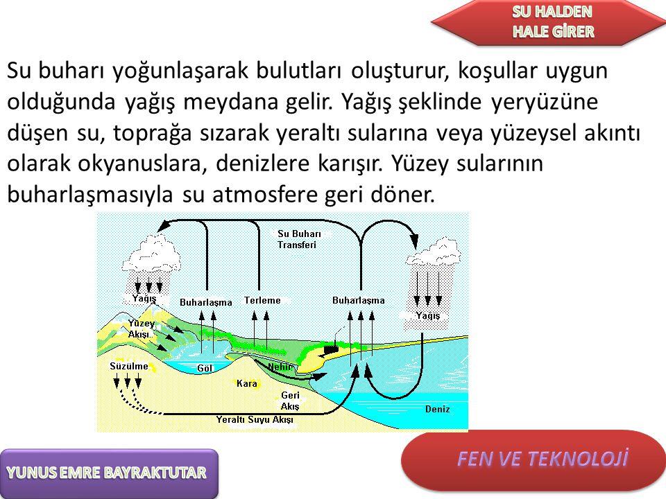 Su buharı yoğunlaşarak bulutları oluşturur, koşullar uygun olduğunda yağış meydana gelir.