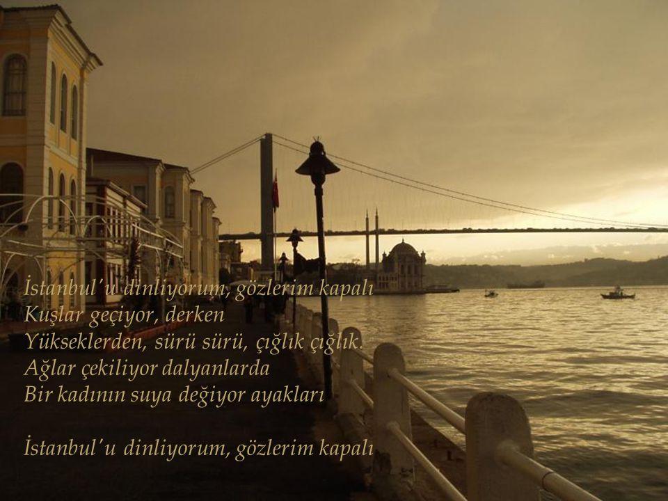 İstanbul u dinliyorum, gözlerim kapalı Kuşlar geçiyor, derken Yükseklerden, sürü sürü, çığlık çığlık.