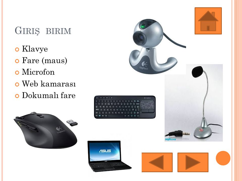 Giriş birim Klavye Fare (maus) Microfon Web kamarası Dokumalı fare