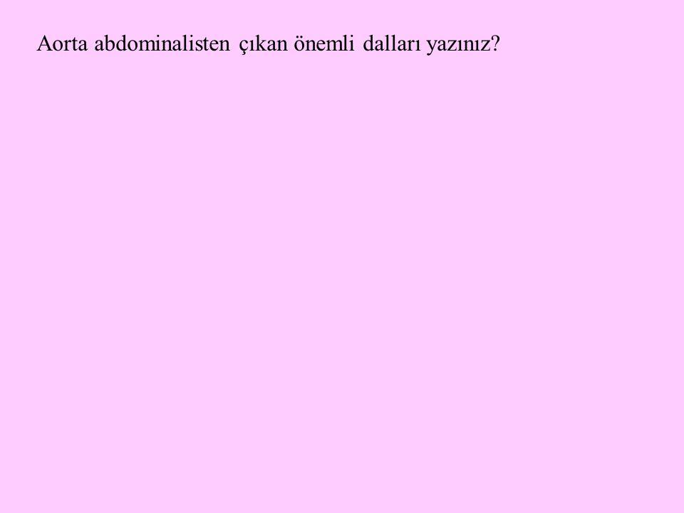 Aorta abdominalisten çıkan önemli dalları yazınız