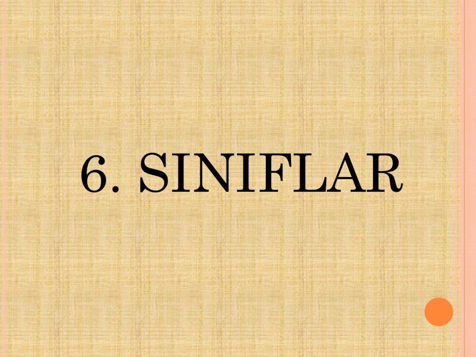 6. SINIFLAR