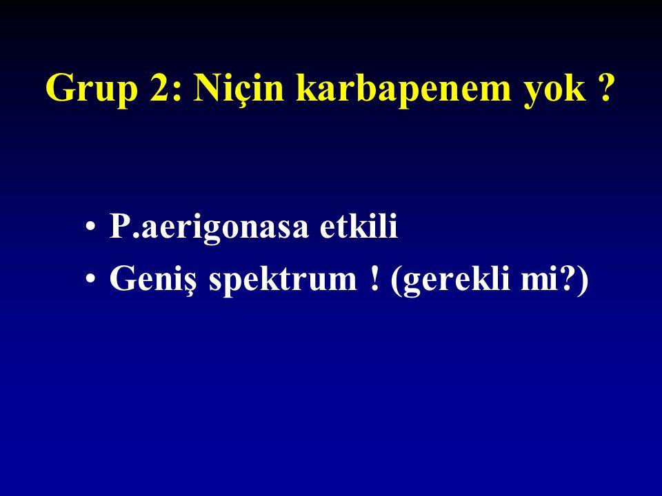 Grup 2: Niçin karbapenem yok