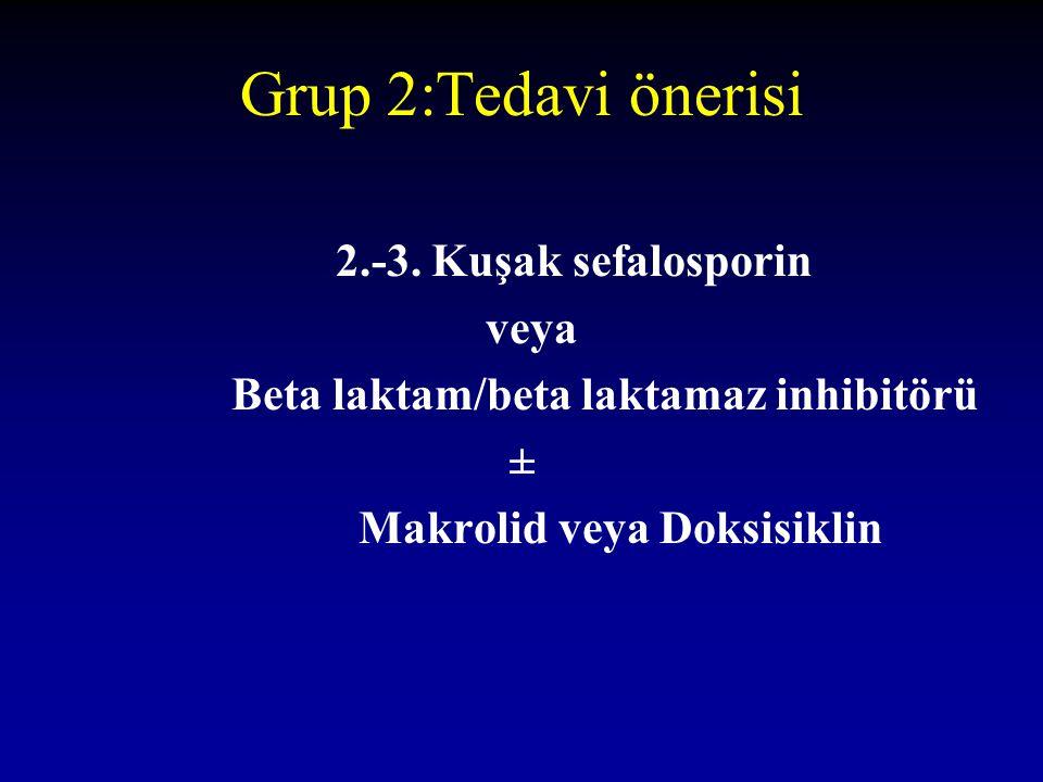 Grup 2:Tedavi önerisi 2.-3. Kuşak sefalosporin veya