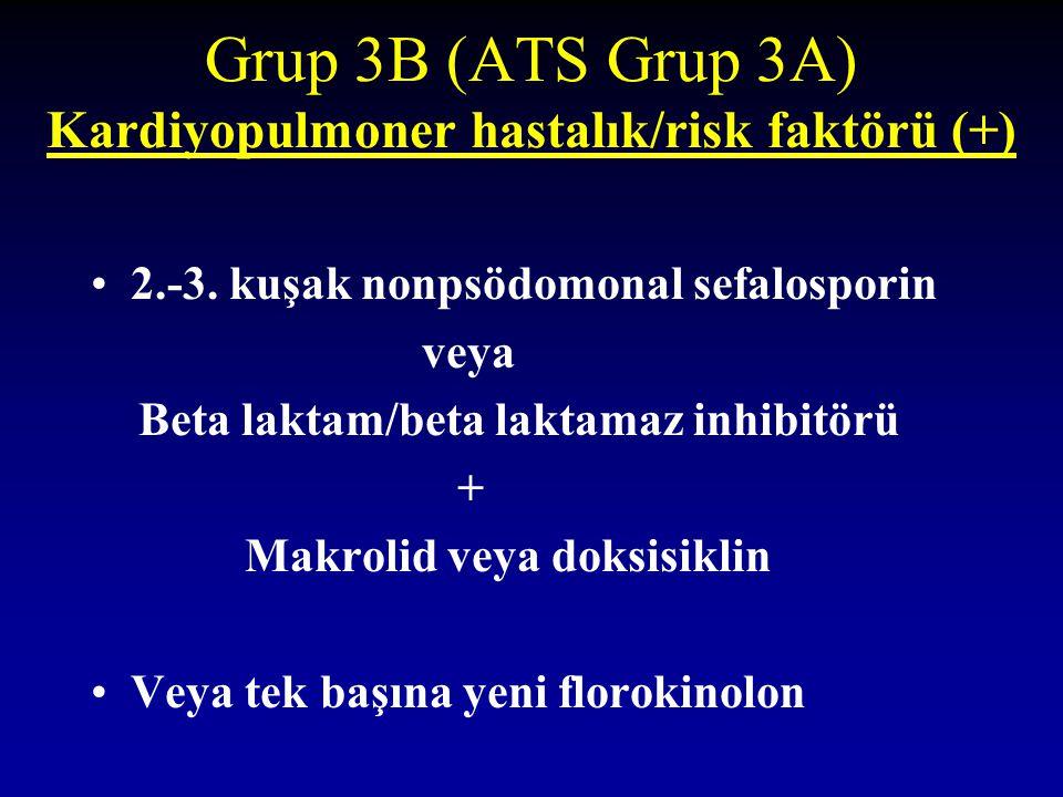 Grup 3B (ATS Grup 3A) Kardiyopulmoner hastalık/risk faktörü (+)
