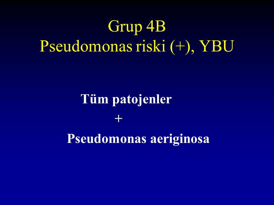 Grup 4B Pseudomonas riski (+), YBU