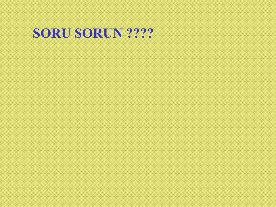 SORU SORUN