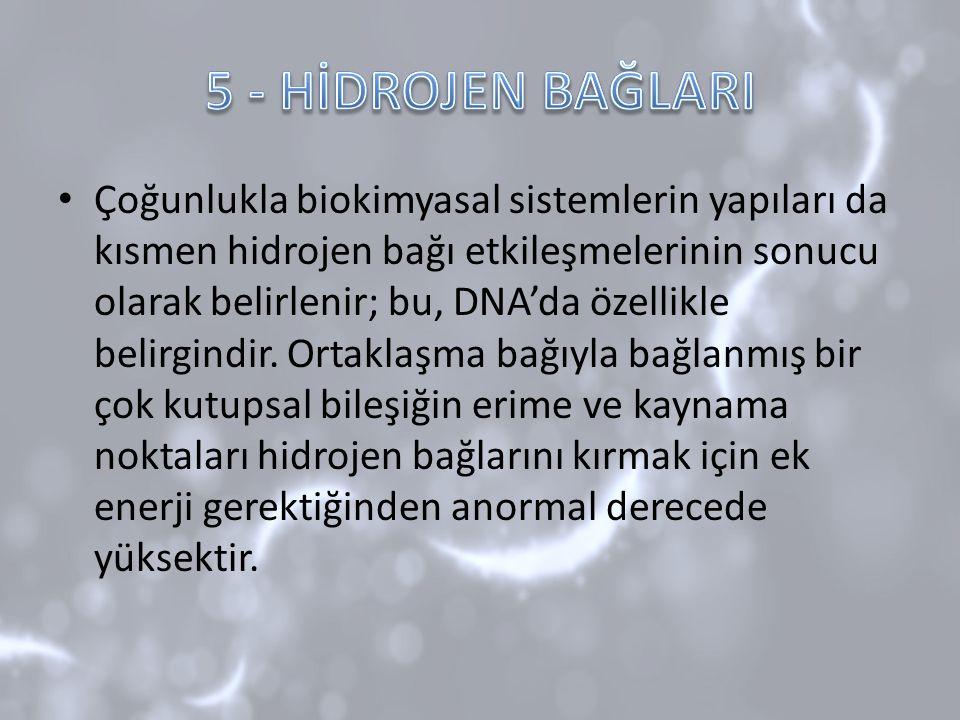 5 - HİDROJEN BAĞLARI