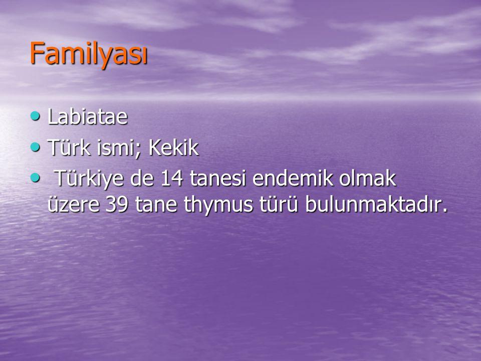 Familyası Labiatae Türk ismi; Kekik