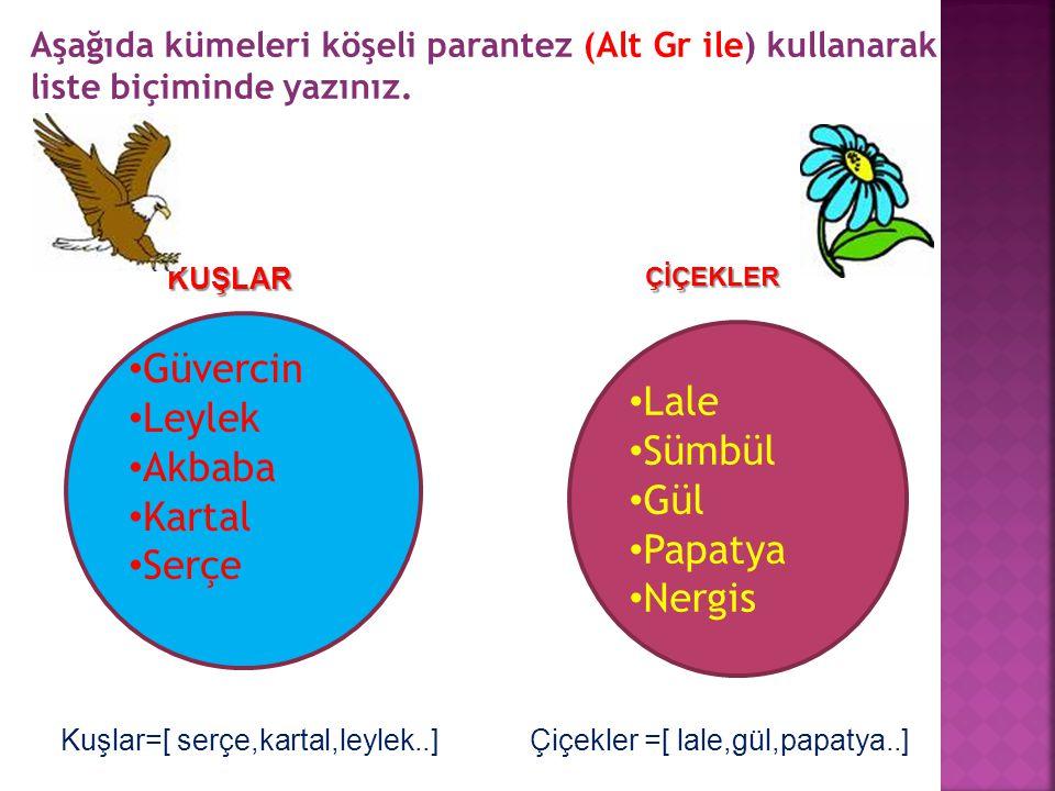Güvercin Lale Leylek Sümbül Akbaba Gül Kartal Papatya Serçe Nergis