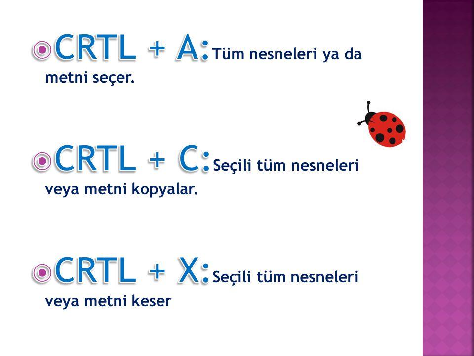 CRTL + A:Tüm nesneleri ya da metni seçer.