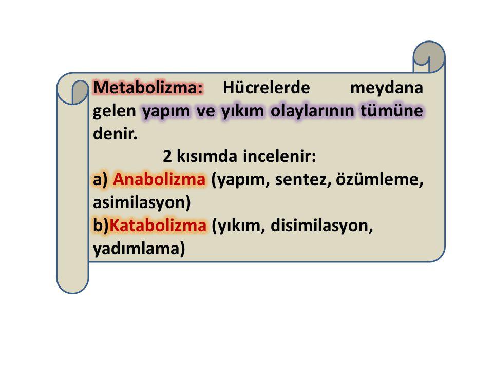 Metabolizma: Hücrelerde meydana gelen yapım ve yıkım olaylarının tümüne denir.