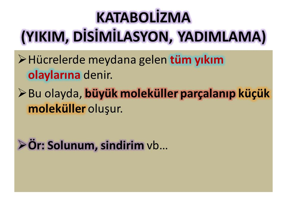 KATABOLİZMA (YIKIM, DİSİMİLASYON, YADIMLAMA)