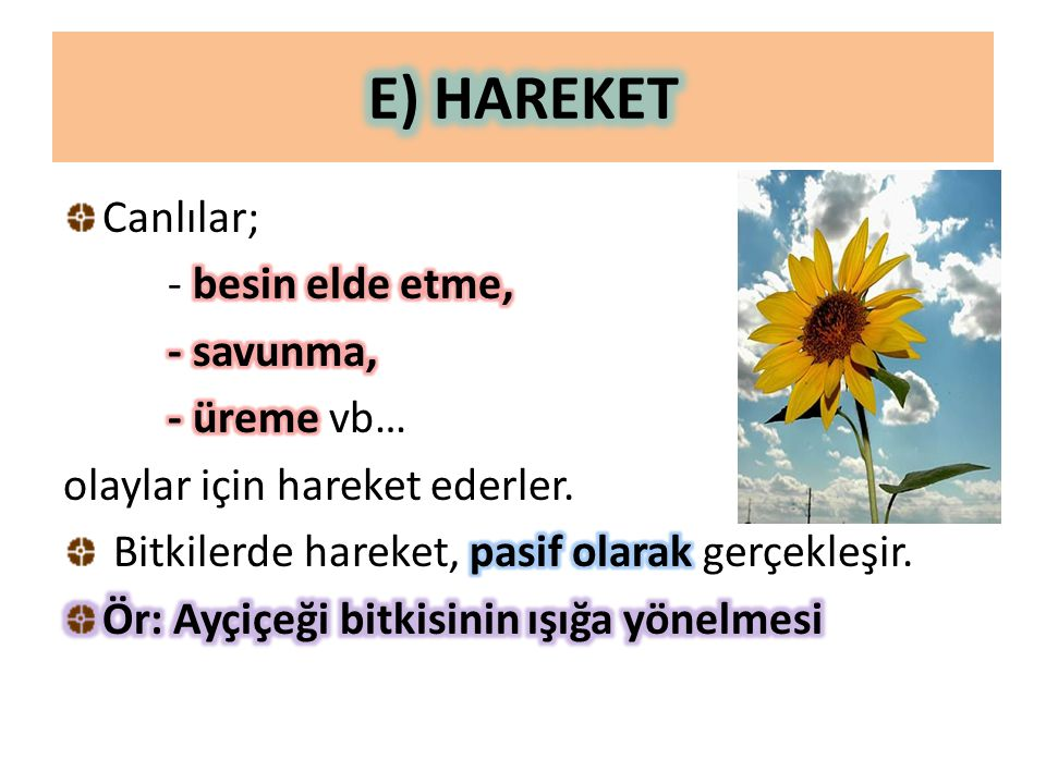 E) HAREKET Canlılar; - besin elde etme, - savunma, - üreme vb…