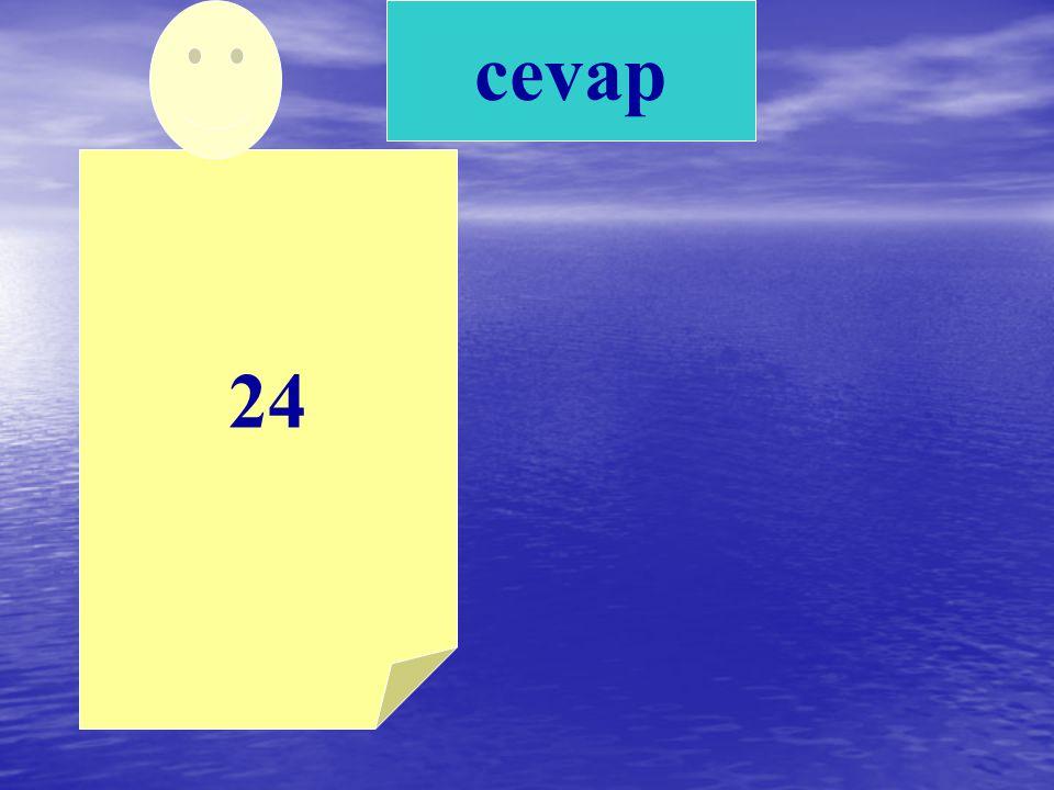 cevap 24