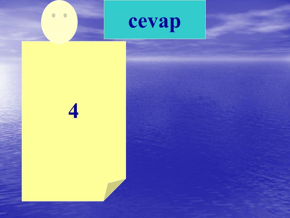 cevap 4