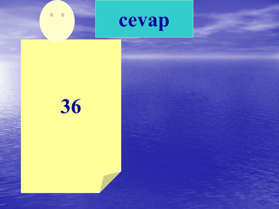 cevap 36