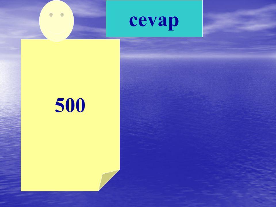 cevap 500