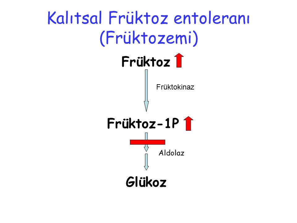 Kalıtsal Früktoz entoleranı (Früktozemi)