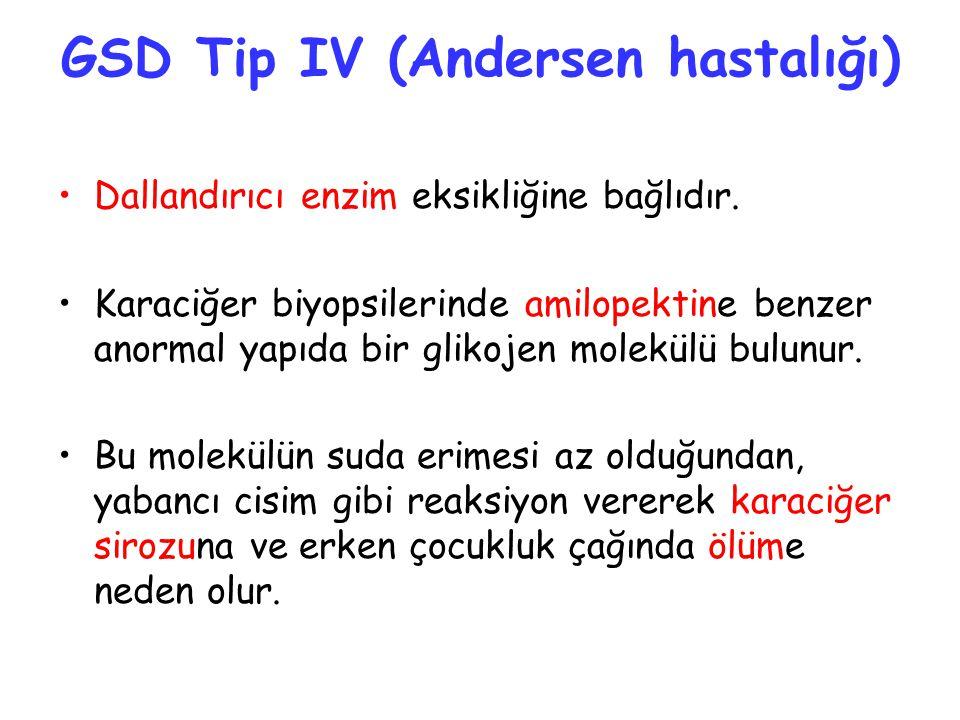 GSD Tip IV (Andersen hastalığı)