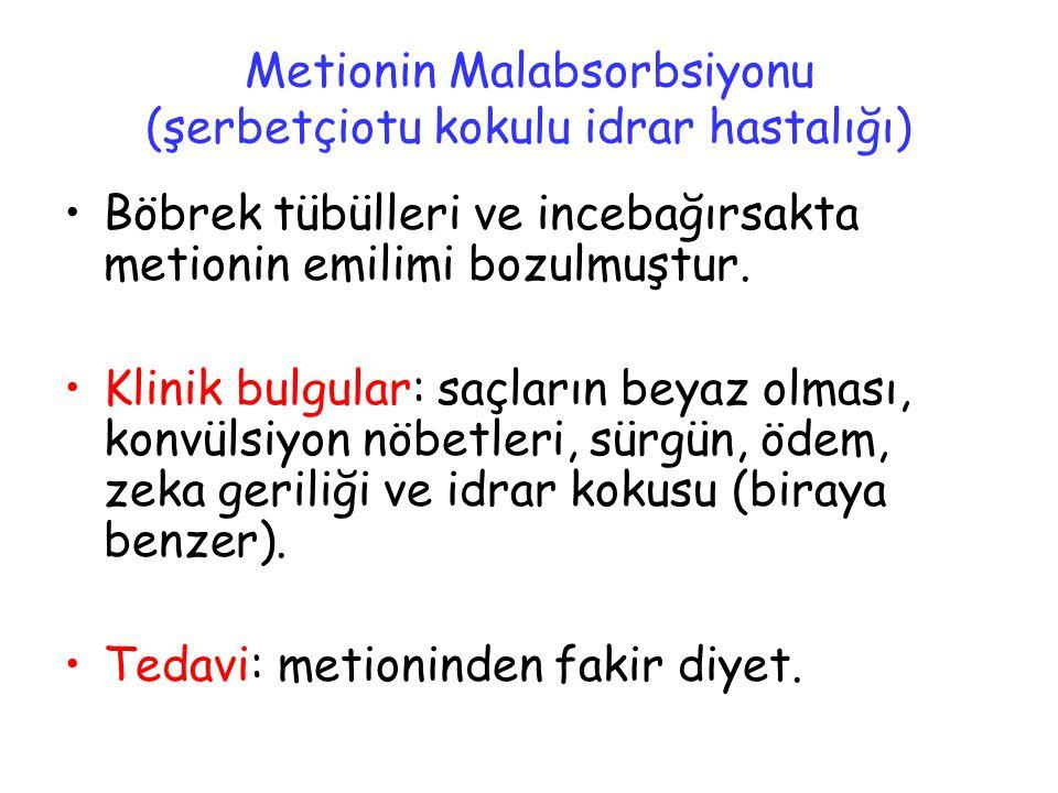 Metionin Malabsorbsiyonu (şerbetçiotu kokulu idrar hastalığı)