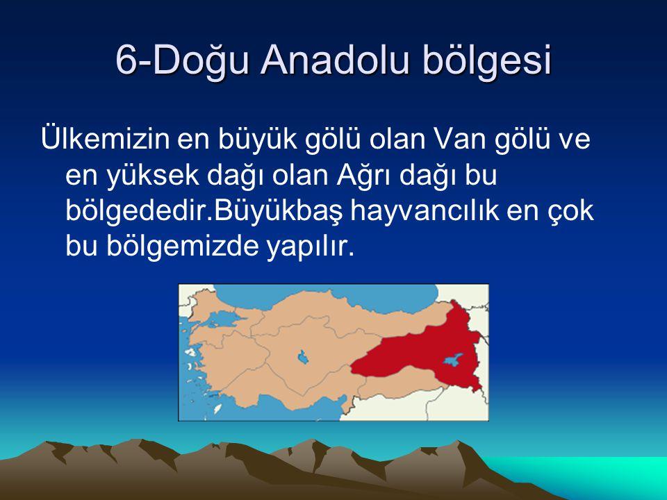 6-Doğu Anadolu bölgesi