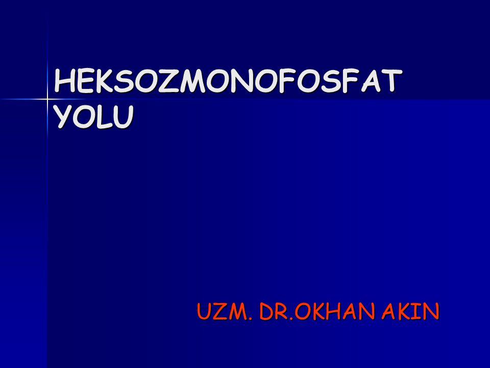 HEKSOZMONOFOSFAT YOLU