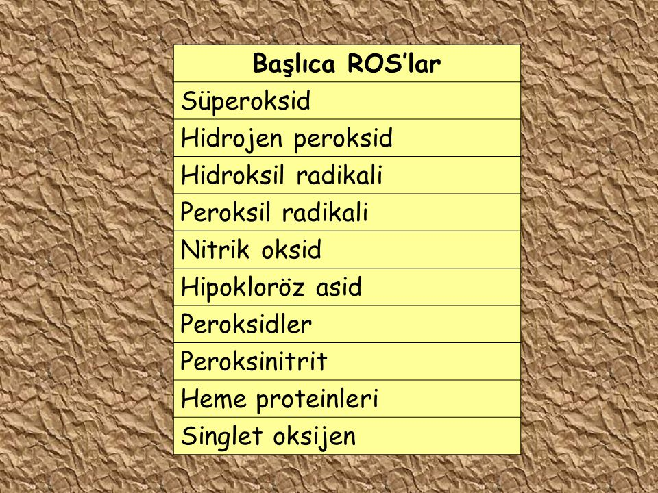 Başlıca ROS'lar Süperoksid. Hidrojen peroksid. Hidroksil radikali. Peroksil radikali. Nitrik oksid.