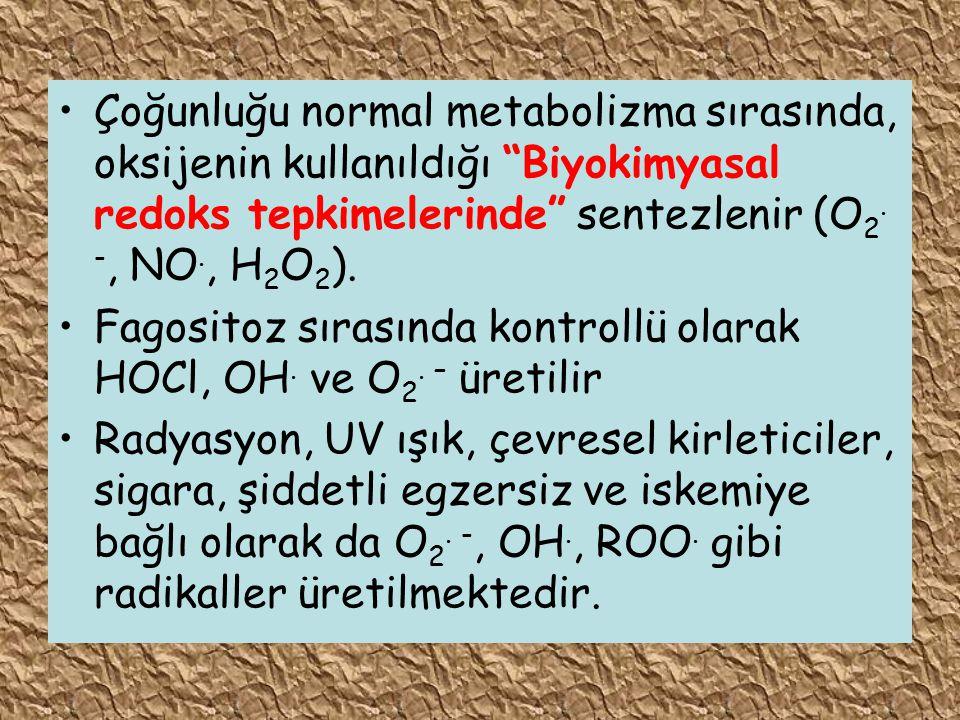 Çoğunluğu normal metabolizma sırasında, oksijenin kullanıldığı Biyokimyasal redoks tepkimelerinde sentezlenir (O2. -, NO., H2O2).