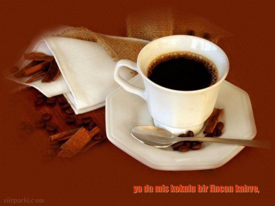 ya da mis kokulu bir fincan kahve,