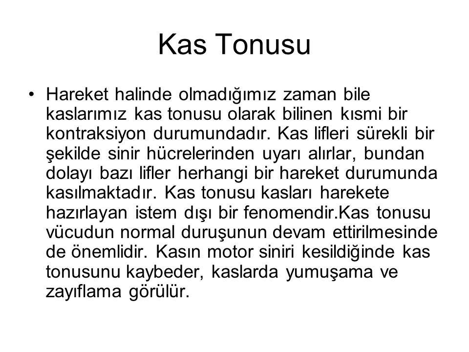 Kas Tonusu