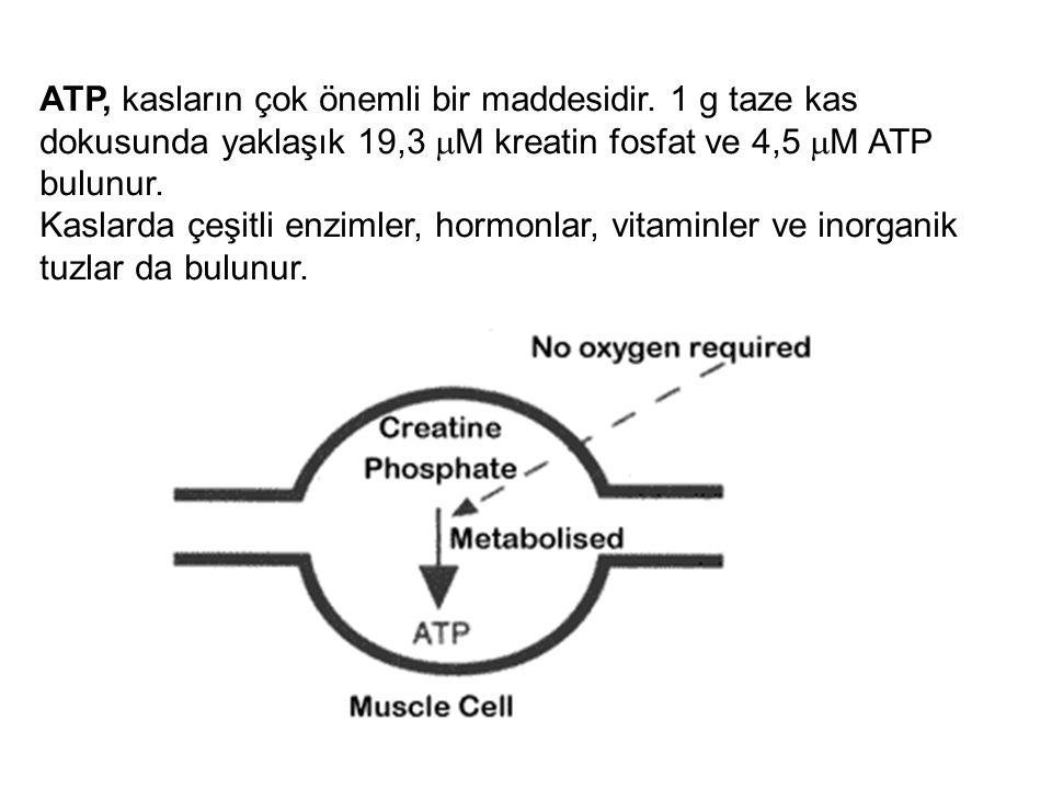 ATP, kasların çok önemli bir maddesidir