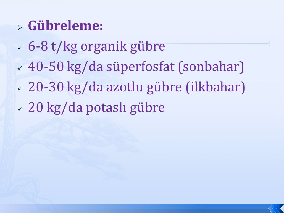 Gübreleme: 6-8 t/kg organik gübre. 40-50 kg/da süperfosfat (sonbahar) 20-30 kg/da azotlu gübre (ilkbahar)