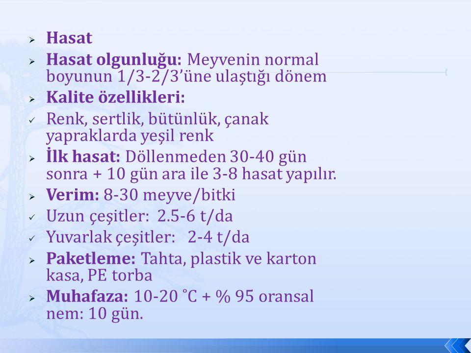 Hasat Hasat olgunluğu: Meyvenin normal boyunun 1/3-2/3'üne ulaştığı dönem. Kalite özellikleri: