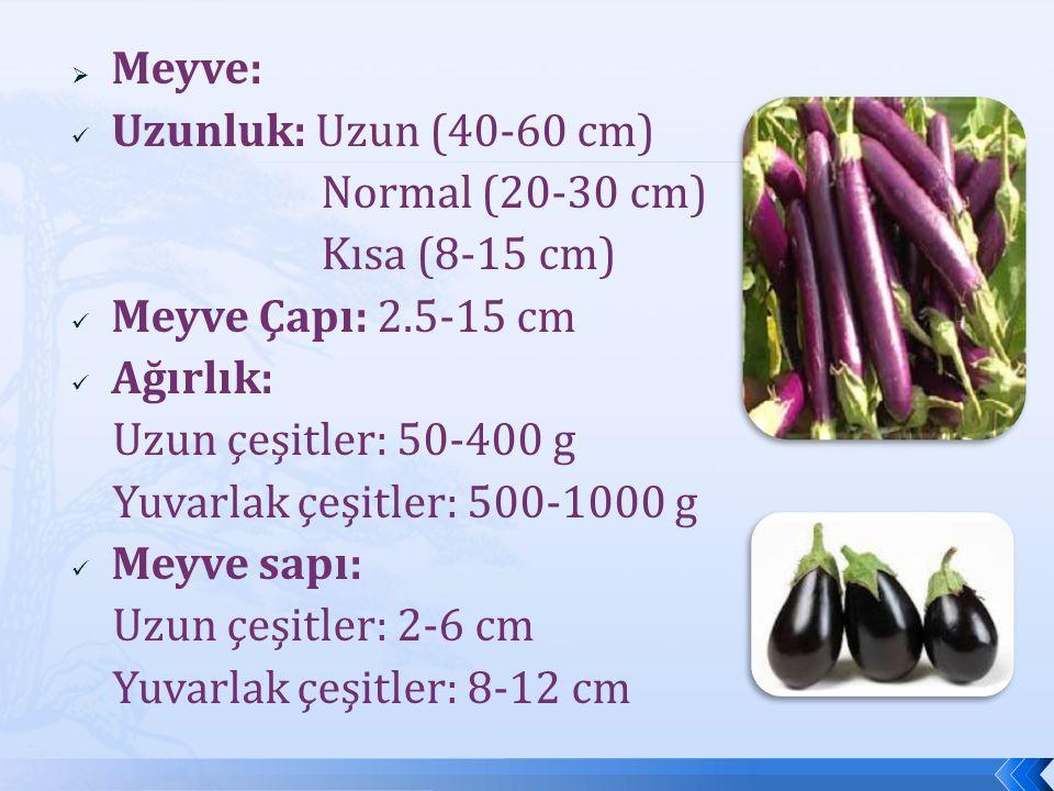 Meyve: Uzunluk: Uzun (40-60 cm) Normal (20-30 cm) Kısa (8-15 cm) Meyve Çapı: 2.5-15 cm. Ağırlık: