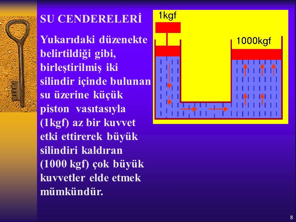 SU CENDERELERİ