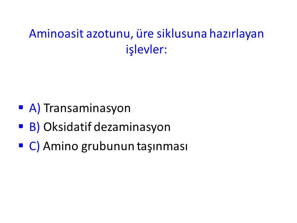 Aminoasit azotunu, üre siklusuna hazırlayan işlevler: